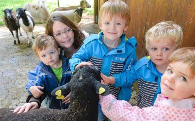 Auf dem Tenwinkelshof lernen Kinder die Tiere kennen