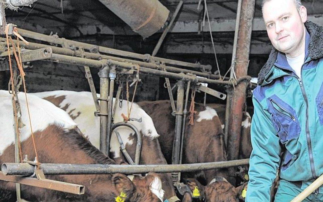 Landwirt Hans-Dieter Porn versorgt die Milchkühe. Foto: Heiko Kempken/WAZ FotoPool